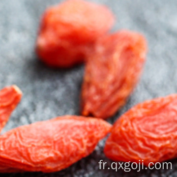 Approvisionnement d'usine bio superfood baies de goji