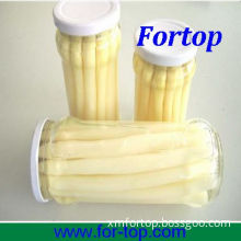 Best Quality Canned White Asparagus