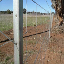 2.0mm Farm Field Field Fence