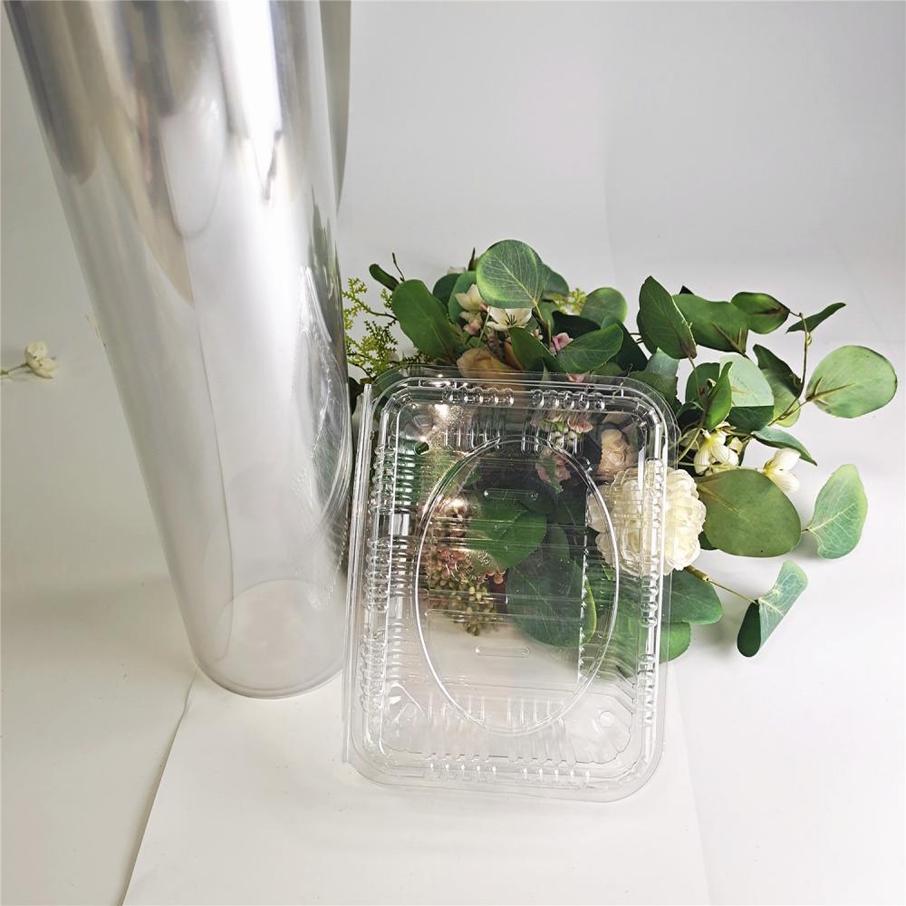 Pet Film Polyethylene Terephthalate 11
