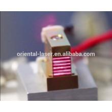 Module laser professionnel de machine d'épilation pour le micro et le canal de macro