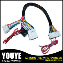 Mazo de cables Tyco Male to Female Custom 10pin