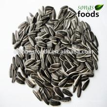 Liste des fournisseurs de graines de tournesol