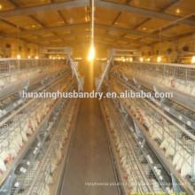 Collection d'oeufs cage de poule pondeuse / couche de batterie bon marché cage de poulet