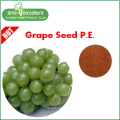 100% puro extracto de semente de uva