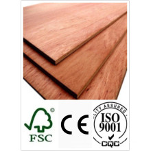 Bintangor Plywood 18*1220*2440mm Bb Grade E2 Glue