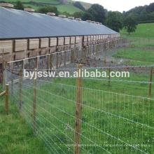 Clôture galvanisée de ferme de champ / clôture bon marché de champ