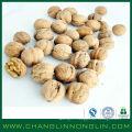 2014 changlin alibaba golden supplier grain de maïs bio séché