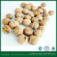 2014 changlin alibaba golden supplier grain de maïs bio séché