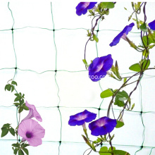Climbing Net Mesh Nylon Net for Garden Use