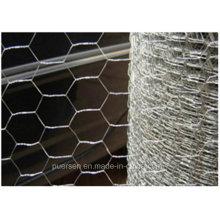 Acoplamiento Hexagonal del acoplamiento de alambre / Anping Hexagonal