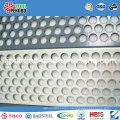 Square/Round Holes Perforated Metal Mesh/Stainless Steel/Galv.