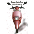 R5 Jiangmen Huasha New Scooter 125cc Summer Vespa