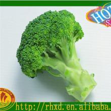 Свежие овощи/ свежий прайс брокколи