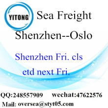 Shenzhen Port Sea Freight Shipping ke Oslo