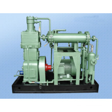 High Pressure Marsh Gas Compressor Methane Compressor Biogas Compressor (Zw-1.7/0.1-10)