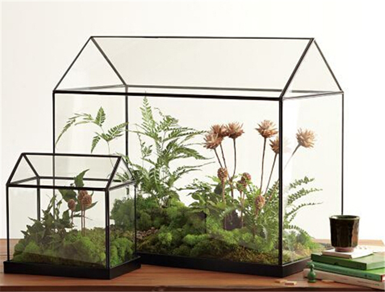 Cool-Mini-glass greenhouse