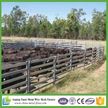 China Supply 6 Rail Portable Livestock bovins Panels