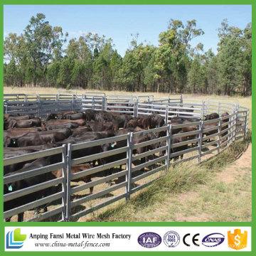 China suministra 6 paneles de ganado para ganado