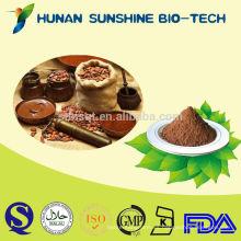 Powder Food Saborizante orgánico de semillas de árbol de cacao en polvo