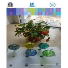 Exquisit arrosant des globes, des bulbes d'arrosage, des globes de fleur pour la décoration à la maison