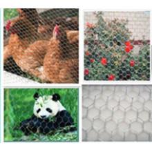 Malla de alambre hexagonal de la venta 2015 / malla del pollo