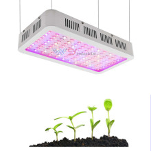 Hydroponic full spectrum cob led grow light