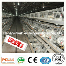 Poul Tech Broiler Chicken Cage
