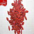 Red sun dried natural distributor Chinese goji berry