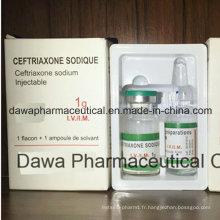 Traitement fini 0.25g Ceftriaxone de pneumonie de médecine d'OEM pour l'injection
