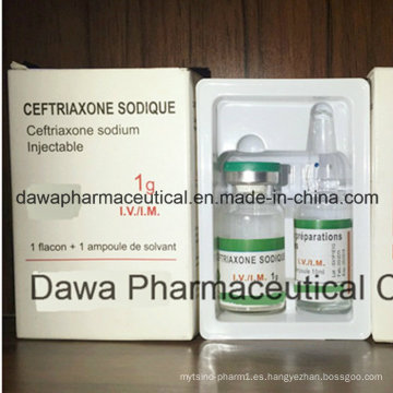 OEM acabado Medicina Neumonía Tratamiento 0.25g Ceftriaxona para inyección