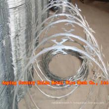 Galvanisé Concertina Bared Wire Fence / Galvanized Razor Wire / PVC couper le fil de rasoir / fil barbelé (30 ans d'usine)
