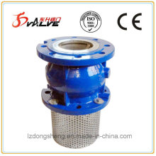 Cast Iron Foot Check Valves Spring Loaded Type Pn 16