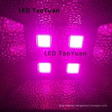 AC220V Greenhouse LED Grow Light 380-840nm 200W