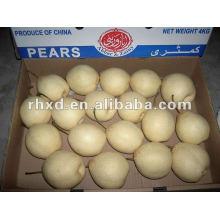 achat en vrac de poires fraîches 2012