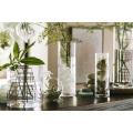 Décoration à la maison Vases en verre haute Forme en forme de cylindre Vase en verre fleur