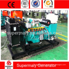 Hot sale ! 60kva natural gas generator with Cummins engine