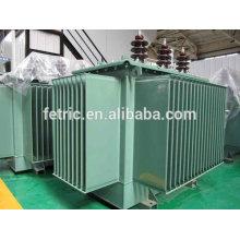 Trifásica a 20 kV del transformador inmerso en aceite cobre