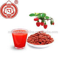 Healthy dried goji berry factory low pesticide dried goji berry fruit