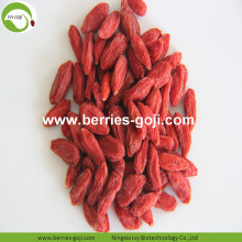 Factory Supply Fruit Anti Age Fresh Goji Berry