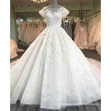 Sexy backless champagne women wedding dress 2017 DY015