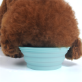 Venda por atacado Economize espaço Silicone Pet Bowl Bowl de viagem