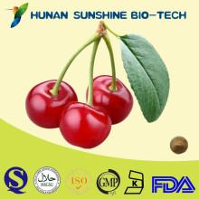 100% Natural Anti-oxidant Acerola Extract Power 17% Vitamin C