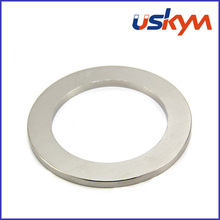 Ring NdFeB Magnets (R-012)