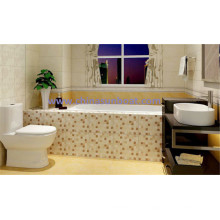 Sunboat Embedded Cast Iron Bathtub with Handrail Oordinary, Household Bathtub/ Enamel Bathtub