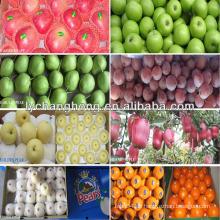 Nennt alle Früchte von frischen Äpfeln