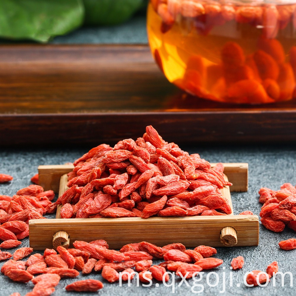 Goji Berry for Health