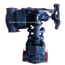 API Standard 800lb Forged Steel A105 Thread End Globe Valve
