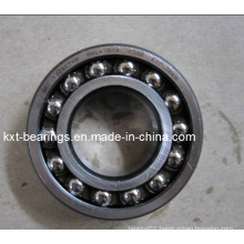 SKF 1206 Bearing Self-Aligning Ball Bearing 1202 1203 1204