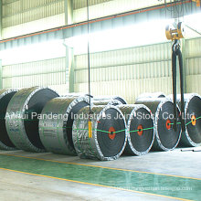 Conveyor System/Rubber Conveyor Belt/Nylon Conveyor Belt